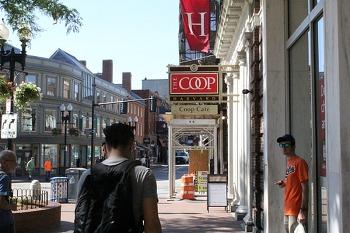 보스톤 1박2일 #5 <Harvard & Museum of Fine Arts Boston>