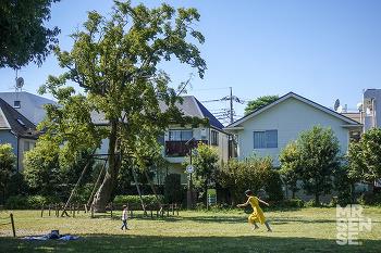 비와 함께 도쿄 #4 : 기치조지 산책, 마가렛 호웰 샵 & 카페, 이노가시라 공원, 신주쿠 빔즈 재팬, 모토무라 규카츠, 단디존, 푸쿠푸쿠, 위키, 시부야 덜튼