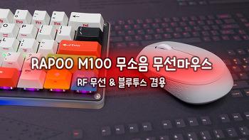 RAPOO M100 무소음 무선마우스
