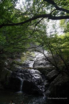 기장 5경 홍연폭포 여름가기 전에 계곡에 발 담궈보기