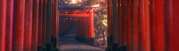 번역┃オリジナル劇場アニメ『HELLO WORLD』公式サイト INTRODUCTION&STORY