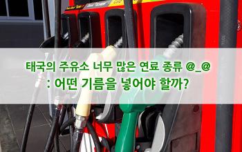 태국의 주유소 이야기, 너무 많은 연료 종류 : 어떤 기름을 넣어야 할까?