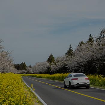 봄이 오나 봄♪ <봄철 자동차 관리 팁>