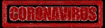 코로나19 확진자(국내외) 현황