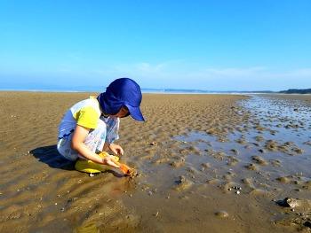 8월, 여름휴가 그리고 파란 청포대 바닷가의 하늘