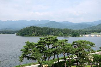 고성 화진포 송림 산책로
