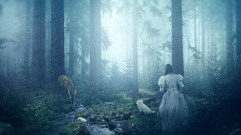 포토샵 합성 강좌 숲 이야기   (Photoshop Manipulation Tutorial Forest Story)