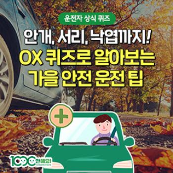 낙엽은 그대로 둬도 괜찮다? OX 퀴즈로 알아보는 가을 자동차 점검 팁