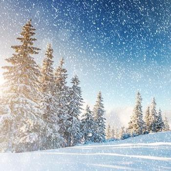 겨울 영화 추천! <가족, 연인과 즐기는 따뜻한 영화 BEST4>