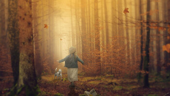 포토샵 합성 강좌 가을 숲 (Photoshop Manipulation Tutorial Autumn Forest)