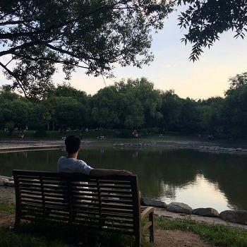서울숲 공원 지루하지 않게 산책하기 좋은 곳