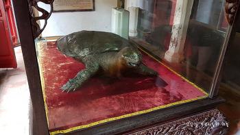 베트남 호안끼엠의 거북이 전설