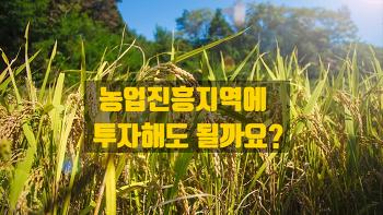 농림지역 중 농업진흥지역에 투자해도 될까요?