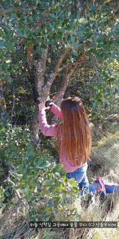 스페인 고산, 아이가 관찰 카메라 설치하고 자연학습을 시작했다