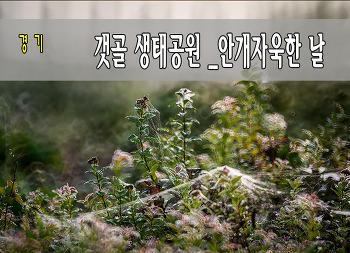 갯골 생태공원 10.01