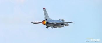 F-16 Falcon 철새 매를 올려봅니다.