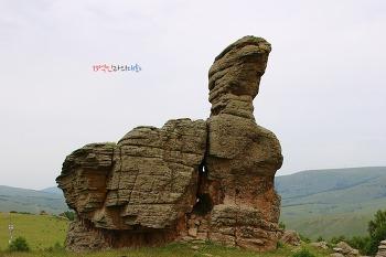 초원의 추억ㆍ석림의 전설…잃어버린 몽골족의 땅이여