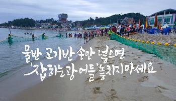삼척 용화해변 맨손 광어잡이체험