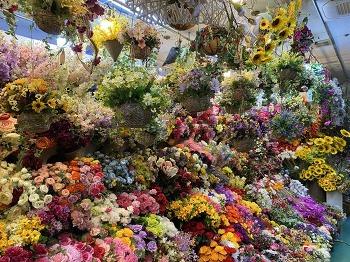 조화 예쁘게 구매할 수 있는 고속터미널 꽃시장