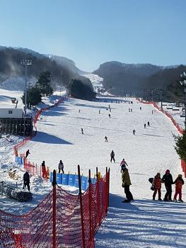 휘닉스파크 스키장에서 올림픽 기분을 느껴보네요.