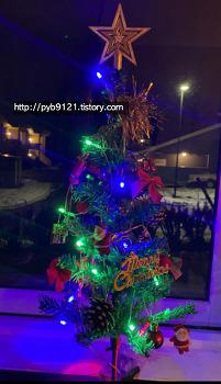 노르웨이 일상 : 블랙프라이데이(블랙위크), 집콕생활, 크리스마스 데코