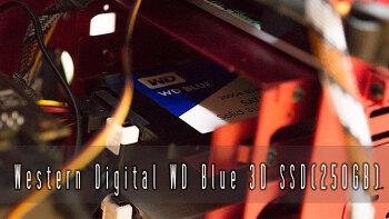 WD Blue 3D SSD 250GB