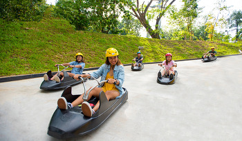 싱가포르 센토사섬에서 즐기는 액티비티, 루지와 스카이라이드