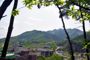 2019.04.27 우면산, 구룡산, 대모산 둘레길