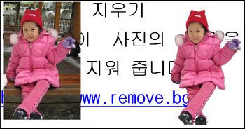 사진 배경을 자동으로 지워주는  인공지능? 사이트 (remove.bg)