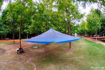 SKYSURF Tree Tent