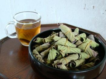 미세먼지에는 유기농구아바잎을 차를 끓여 마셔 보세요.