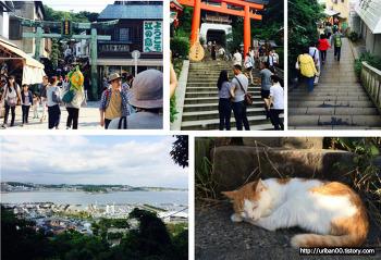[일본여행] 도쿄 신주쿠에서 가마쿠라, 에노시마 가는법. 에노덴 한글 노선도