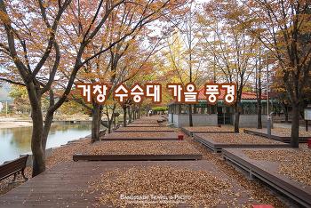거창 수승대 가을 풍경, 가득 쌓인 낙엽 위를 걷는다