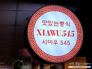 잠실 파크리오상가 중국집 맛집 : 시아우 545 (XIAWU545)