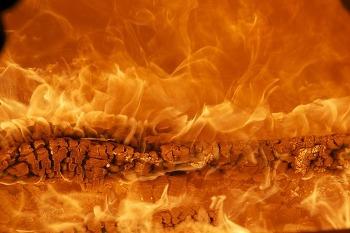 [온라인새벽기도] 비전의 불씨를 살리라