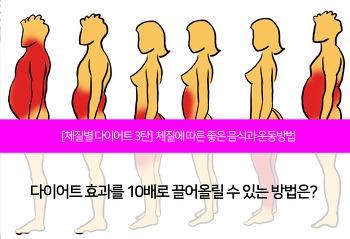 [체질별 다이어트 3탄] 체질별 음식과 좋은 운동방법이 궁금해요!