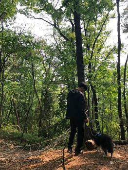 북한산 국립공원 둘레길 전부 애견동반 출입불가