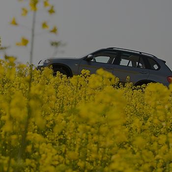 꽃피는 4월, 자동차 관리 체크리스트!