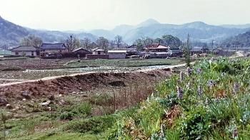 대전 성북동(33년 전 모습)/19870504