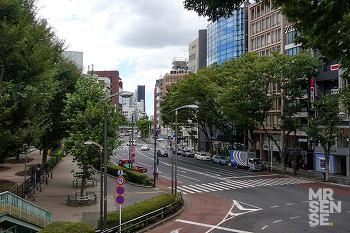 1년만에 도로 도쿄 #2 : 하라주쿠 캣스트리트 쇼핑, 라디오 에르메스, 시즈루 스테이크, 스토어바이니고, 베이프키즈, 아오야마, 미스터젠틀맨, 노아