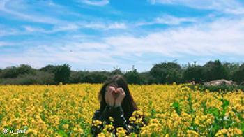 봄나들이 사진 잘 찍는 꿀 TIP