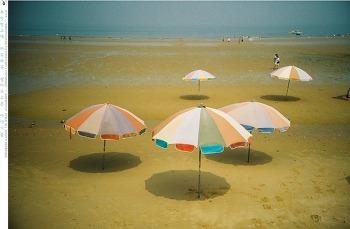 여름 휴가의 추억