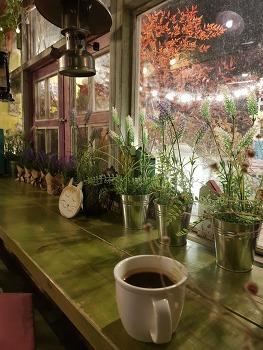 울산 분위기 카페 - 숲스토리는 깡패 수준/버스카페