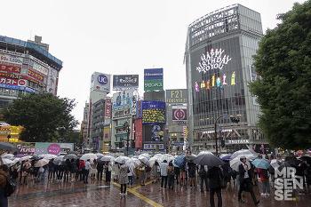 비와 함께 도쿄 #1 : 비오는 다이칸야마, 맘모스 츠케멘, 티사이트 츠타야, 봉주르 레코드, 키츠네, 오쿠라, 포터, 베이프, 로그로드