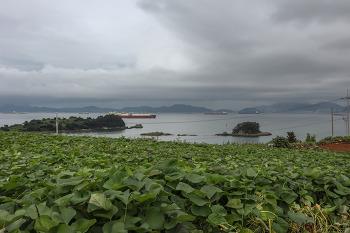 [남해] 남해 풍경과 함께한 바래길 투어