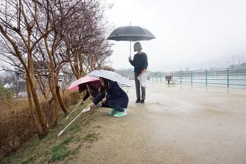 수성가족봉사단 문화재지킴이 개별활동(수성못)