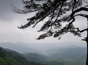 [주말 일기] 춘천 용화산 & 라뜰리에김가 & 탑골가든