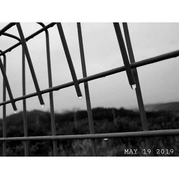 흐린 날, 흑백사진