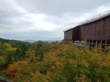 [미도리의 교토 여행] 가을 단풍 구경 2박 3일 코스