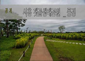 추석 연휴 시흥 갯골 생태공원